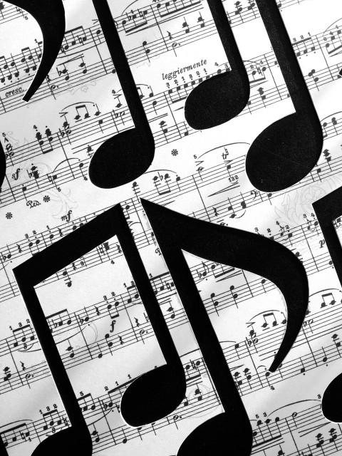 Clases de Lenguaje Musical en Almozara